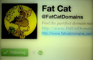 fat cat domains